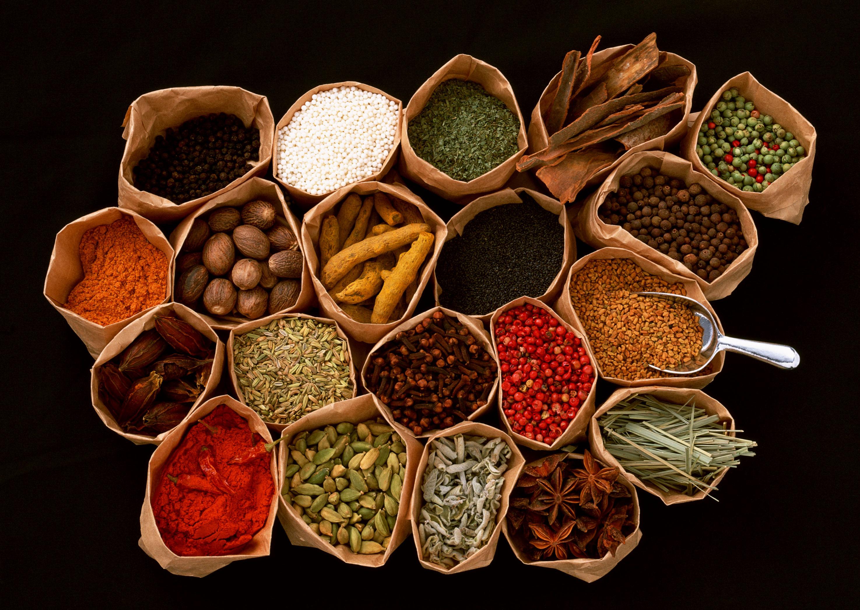 دانشجویان اتریشی برای فراگرفتن طب سنتی به ایران می آیند