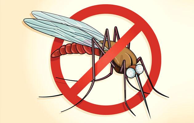7-Tips-for-Malaria-Prevention
